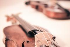 violin-01